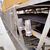 Screen & Conveyor Belts
