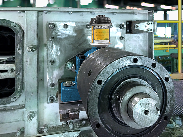 Greasomatic lubricates a conveyor tail pulley bearing